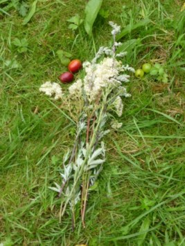 Meadowsweet, Crab Apples and Plum