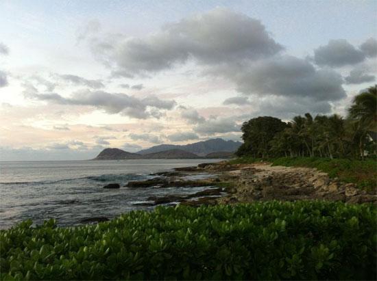 Hawaii Shore Line