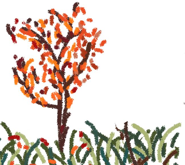 Matisse-Inspired