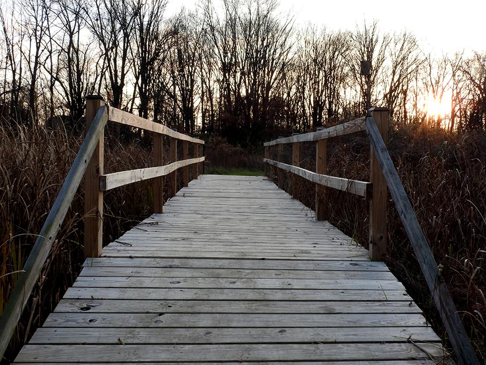 walking-bridge