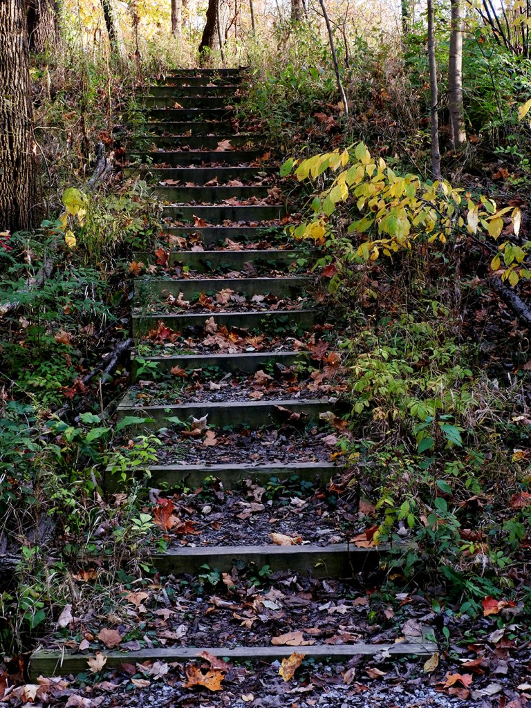 stairs-at-dubenspeck-park
