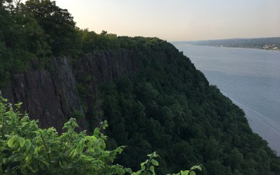 Along the Palisades