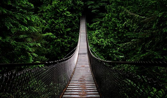 vivre-mieux-traverse-du-pont-evolutif