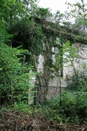 Saulxures-Chateau-07
