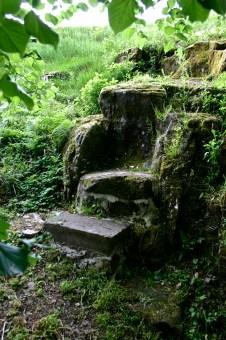 Saint-Colomban-Ermitage-28