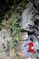 Rehon-Grotte-de-Lourdes-29