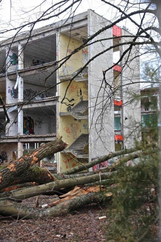 Lycee-St-Joseph-Demolition-1-19