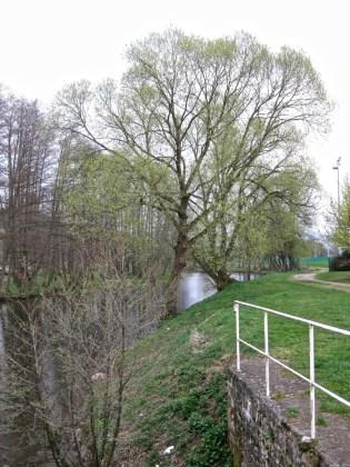 Saint-Dié-Vanne-de-Pierre-14