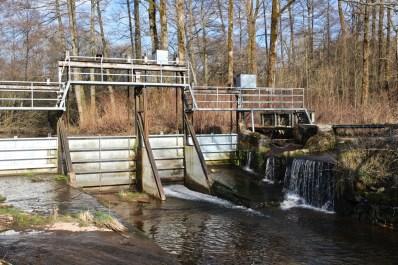 Moyenmoutier-Barrage-de-la-Prelle-06