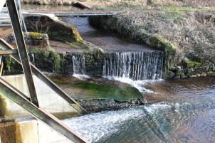 Moyenmoutier-Barrage-de-la-Prelle-19