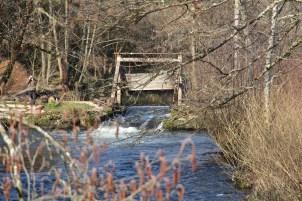 Moyenmoutier-Pont-de-la-Retorderie-12