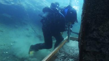 Colado de concreto bajo el agua