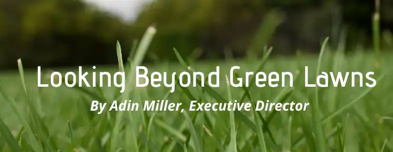 beyond green lawns