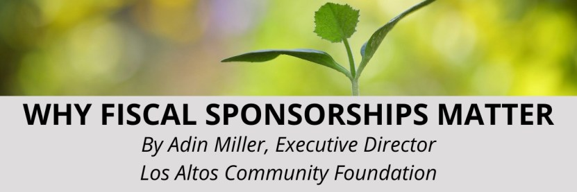 why fiscal sponsorships matter