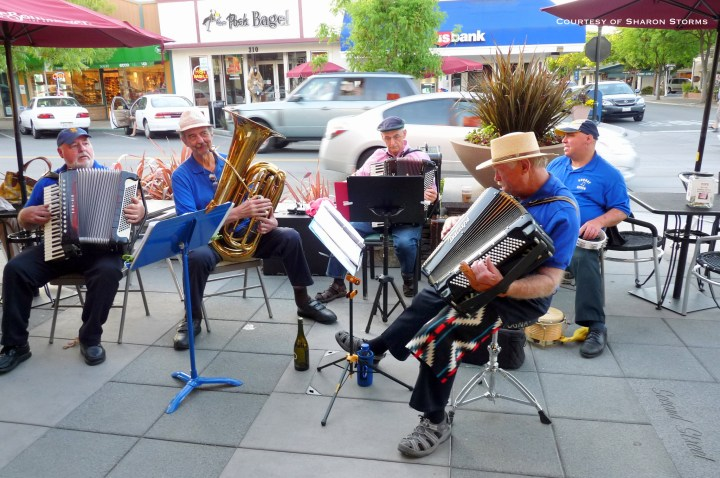 musicians at los altos first fridays