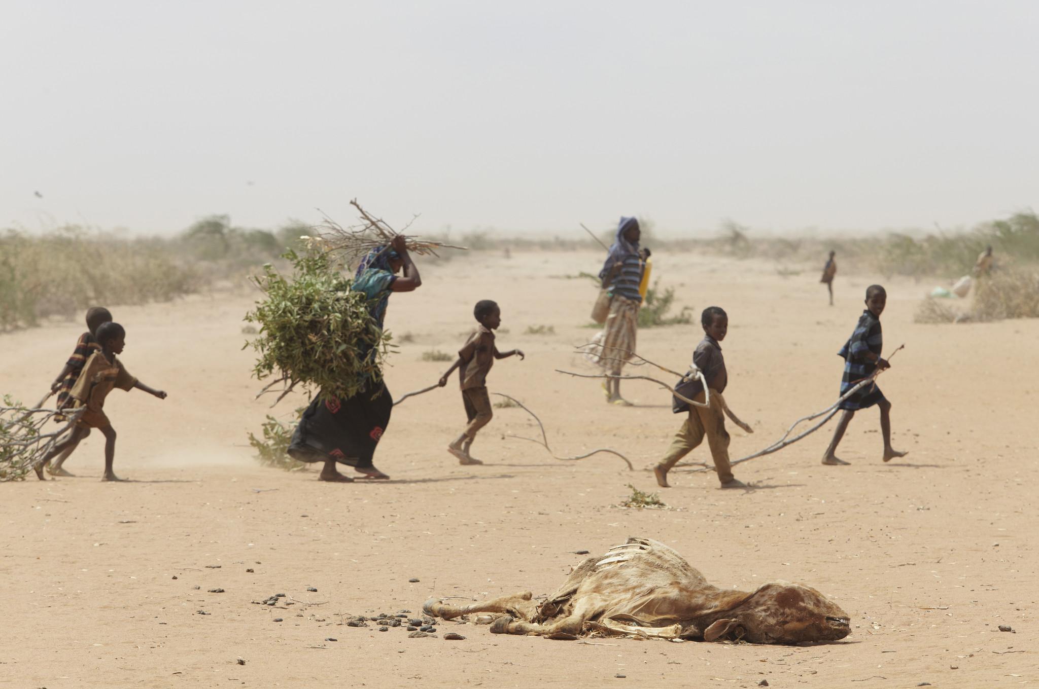 migranti ambientali