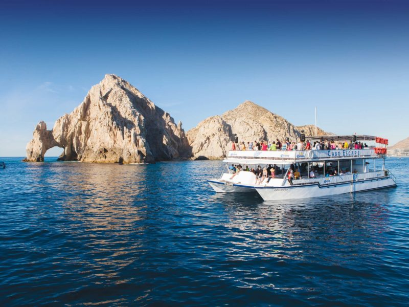 cabo-escape-whale-watching-3