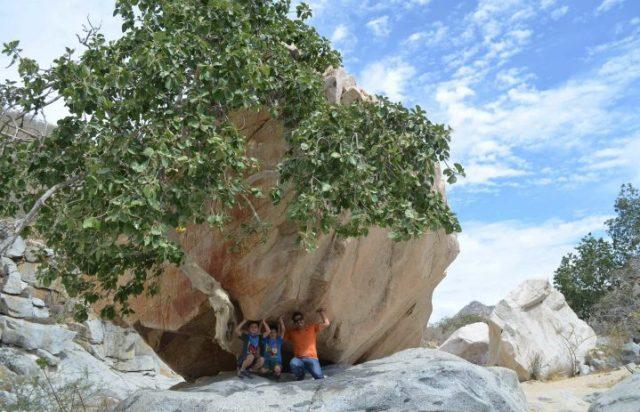 cactus-atv-beach-desert-tour-2