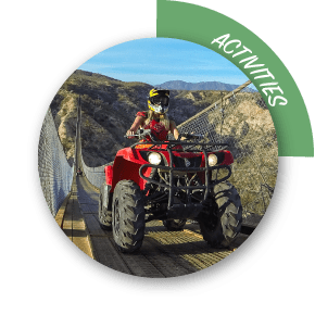 Activities and Tours in Los Cabos