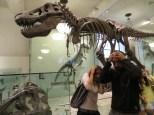 Un T-Rex! estamos j*didos