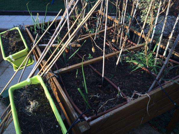 Reciclando tierra vieja de jardineras