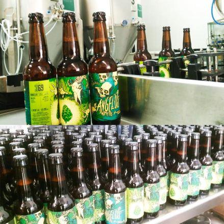 angelus birra