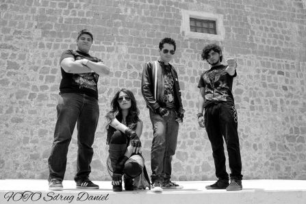 equidna band