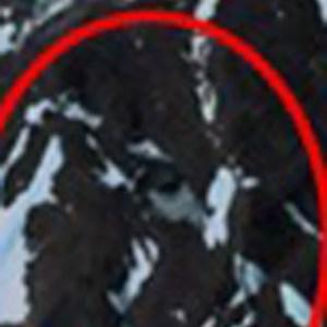 Zoom. Encontrado junto a la pared de la cueva 3ª en la izquierda aparece la cueva 6ª, con cubierta o cúpula.