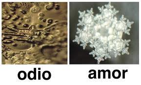 Vibración del AMOR o Vibración del ODIO.