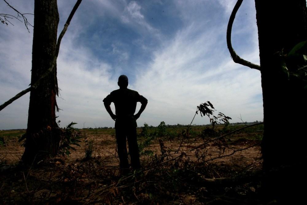 Land-grabbing-cambogia