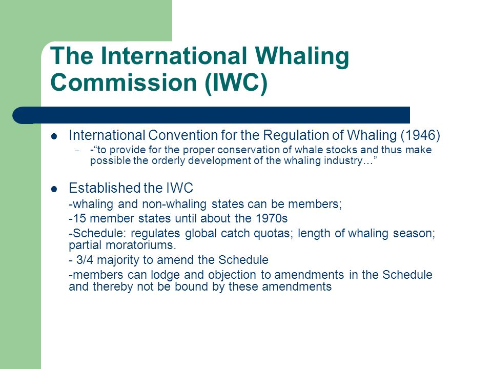 The+International+Whaling+Commission+(IWC).jpg