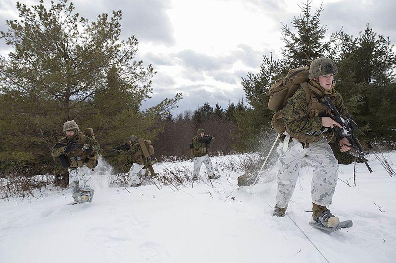 esercitazione militare canada