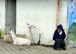 Elezioni in Ecuador: problemi per il socialismo sudamericano?