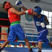Boxeo Mundial Hamburgo México Falta Recursos