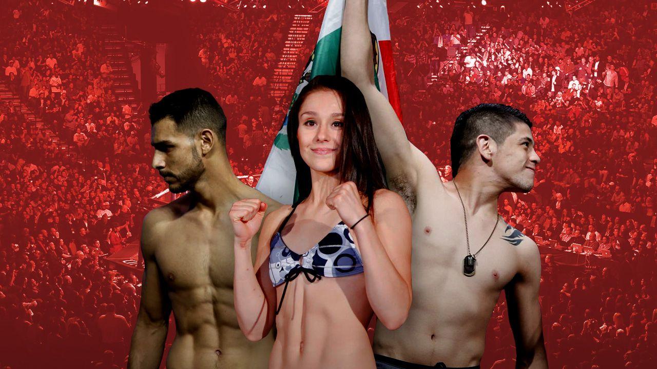 Mapa UFC Mexicanos radiografía octágono, MMA peleadores mexicanos