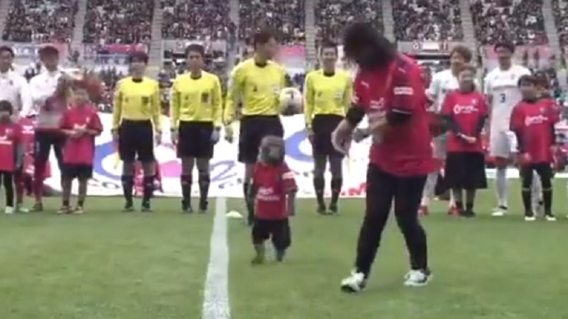 mono, mascota, Cerezo Osaka, futbol de japón