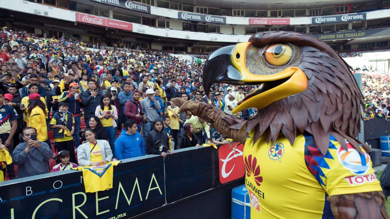 Mascota América Matrimonio Cancha Estadio Azteca