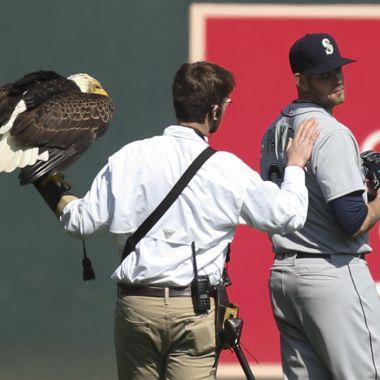 Águila Beisbol James Paxton