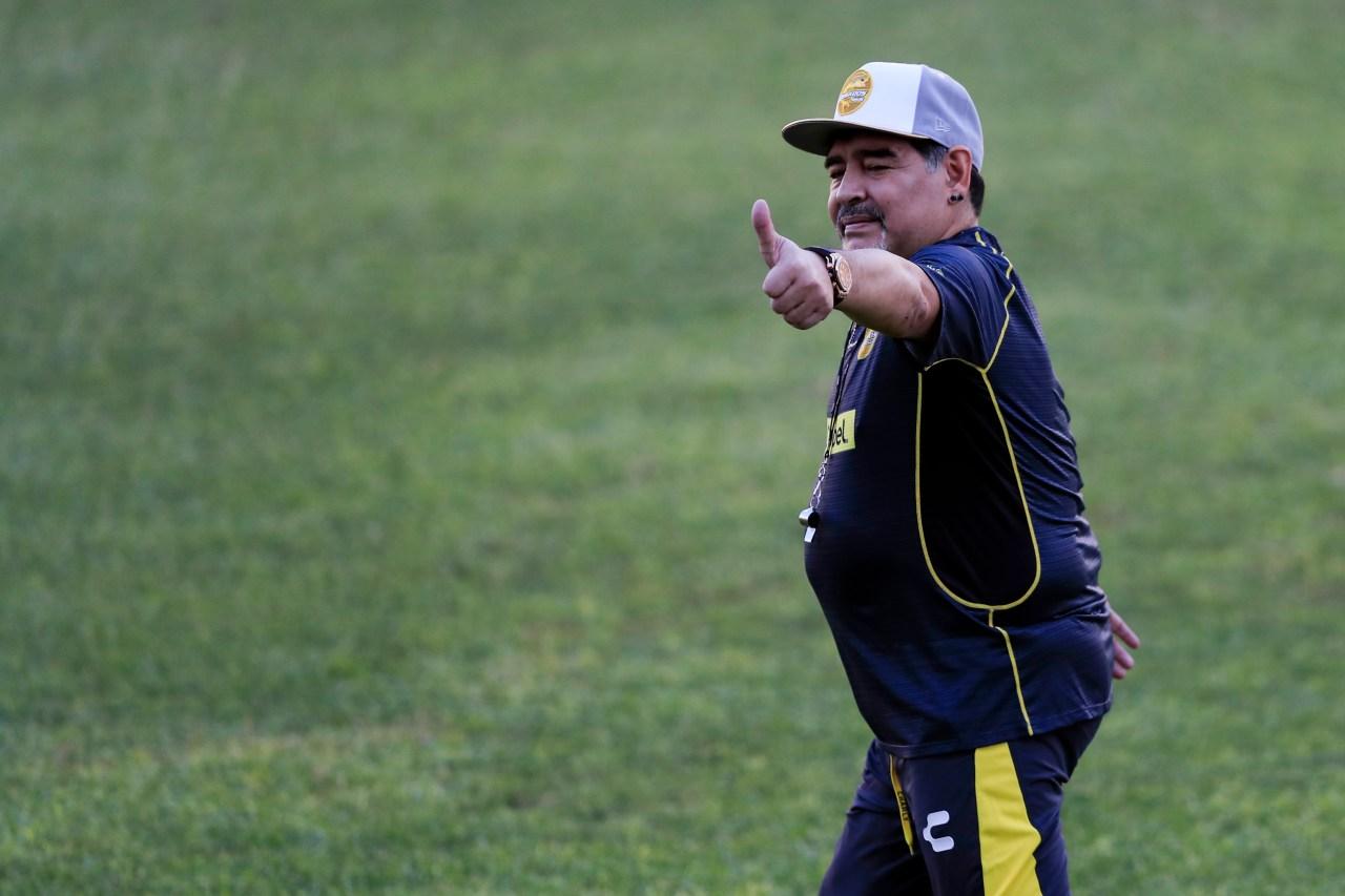 Diego Maradona, Vinicio Angulo, Consejos, Dorados