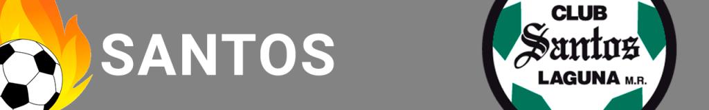 Banner Santos