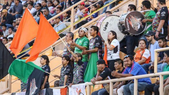 08/02/2020, Afición, Alebrijes de Oaxaca, Certificacón, Alebrijes