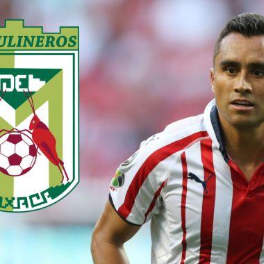 Chapulineros de Oaxaca firma a jugador histórico de Chivas para la LBM