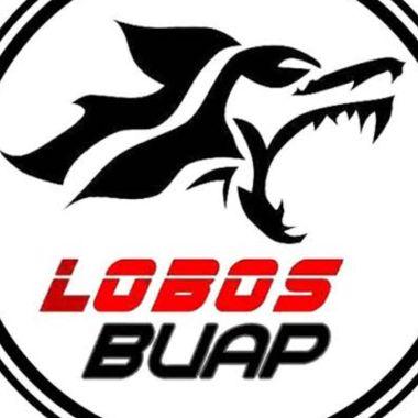 Cancelan venta de Lobos BUAP y ya no podrá jugar en la LBM