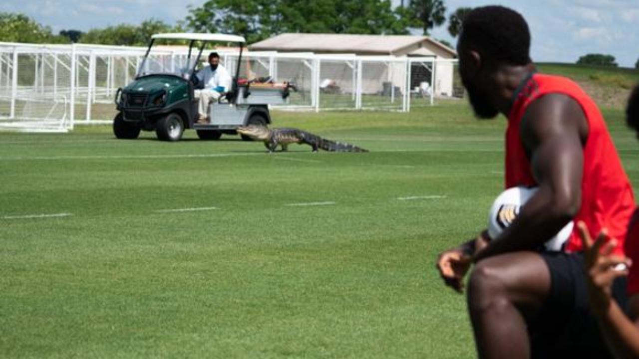Cocodrilo entra al entrenamiento con Toronto FC