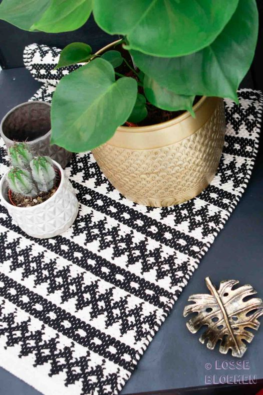Trends Merk Liv op showup 2017 met Monstera plant en cactus