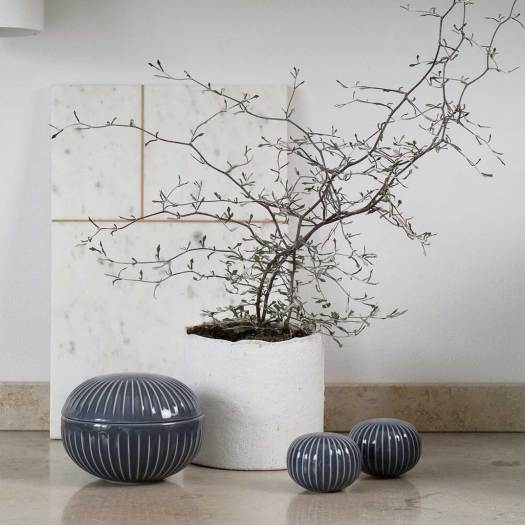 byjensen losse bloemencorokia maori bonsai lossebloemen