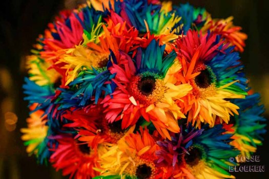 losse bloemen Trade fair Royal FloraHolland lossebloemen flowers Happy colors bv