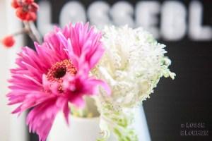 Brassica sierkool en gerberaBloemen en planten quotes voor op de llightbox of letterbord - lossebloemen.nl