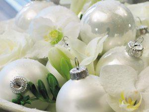 kerstbloemen-top-3-losse-bloemen-blog---beeld--mooiwatbloemendoen.nl