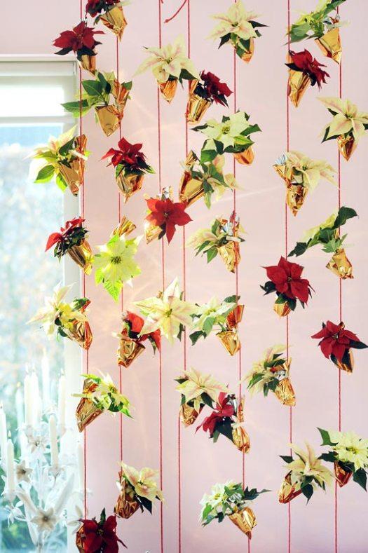 kerstster-ophangen-beeld-mooiwatbloemendoen-mooiwatplantendoen-planten-kerstster-2017-lossebloemen-blog